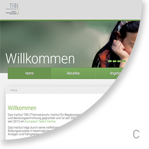 website tibi